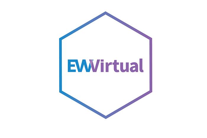 EmploymentWorks Virtual Course